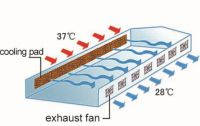 Evaporative Air Cooling Pad System
