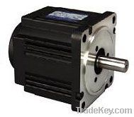 Blushless DC Electric Motor