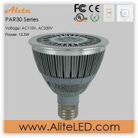 PAR30 led spot light