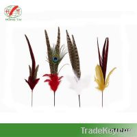 different style of feather picks for decoratin