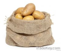 Quality Potato Bag (Factory Price)