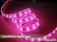 LED Light  COB 3W LED Spot light  LED Transit Bus Light, LED Lights