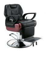 Barber Chair Salon Chair