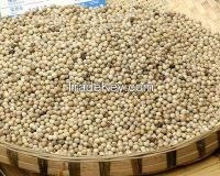 whole white pepper high quality from tianjin