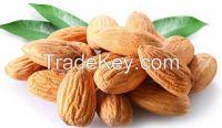 Raw Almond, Good Quality, Organic