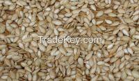 2015 New Crop Pumpkin Seeds, pumpkin seeds kernels