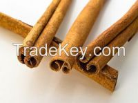 new corp Raw Cassia Bark/Cinnamon whole/ cassia Presl bark hot sale with big discount