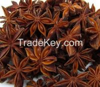 hot sale Organic Star Anise for export