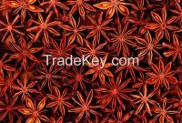 New Corp 100% Pure Natural Star Anise/Aniseed with seeds