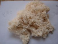 pc yarn, pp yarn, cotton linter , cotton yarn waste