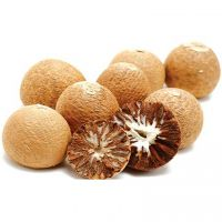 Betel Nuts with High Quality and Best Price
