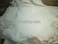 Genuine Ostrich Skin Leather - White Crust / Finished