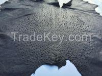 Genuine Ostrich Leather - BLACK Class B/C Size, All grades