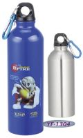 Sell Stainless Steel Sports Bottle