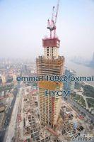 QTD4522 Inner Climbing Luffing Tower Crane 6t Load 45m Jib L46 Mast