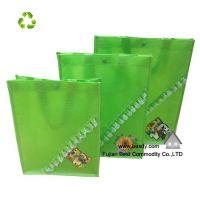 Fahion Eco PP Non woven shopping bag