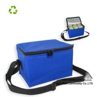Out Door Insulated Disposable Nonwoven Cooler Bag