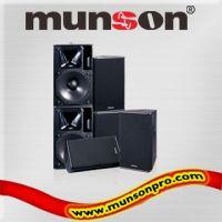 Professional Loudspeaker ( P series)