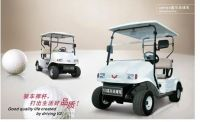 Golf car,Golf carts,electric golf car