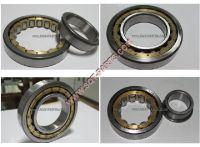 Offer cylinder rollber bearing