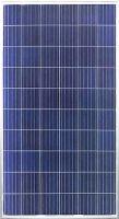 255W~275W Poly Solar Module