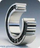 Toroidal roller bearing
