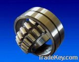 Cylindrical roller bearing 24120