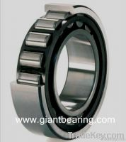 Roller Thrust Bearing (Spherical)