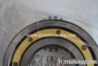 SKF Bearing 6304