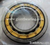 NTN Bearing 7219BL1G