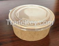 Disposable Paper Frozen Yogurt Cup