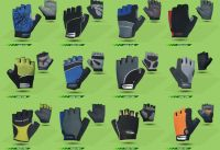 Cycing Gloves