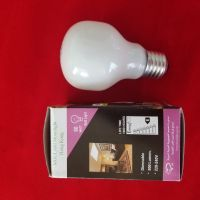 60W 220-240V E27 Moonlight incandescent light bulb