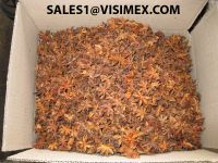 All kinds of Star aniseed (We are manufacturer)