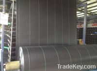 Durable PP Woven Geotextile for road construction and farmland