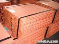 Copper Cathode (Pure Copper Wire Millberry Scrap 99.9% and Copper Cathode