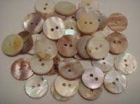 Seashell buttons