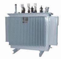 Oil Immersion Power Transformer