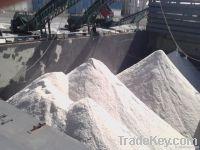 Packed Salt in 25 Kg