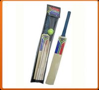 Cricket Set for Kids