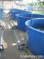 Fibreglass aquatic tank , fish tank