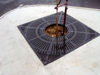 Protect Tree Grate
