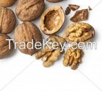 Hamalay Walnut