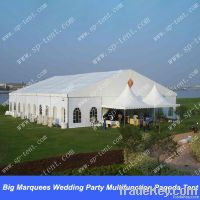 Big Marquees Wedding Party Multifunction Pagoda Tent