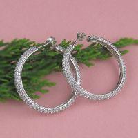 2011 fashion 925 sterling silver CZ earrings jewelry