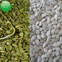 Grade AA Shine skin  pumpkin seed kernel