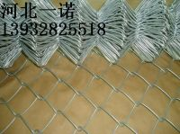 hot sale diamond shape wire mesh with protecting function