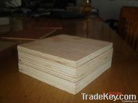 commercial plywood /marineplywood/birch plywood/okume plywood