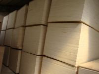 birch commercial plywood