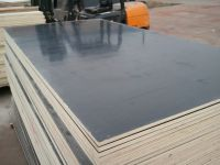 black film faced plywood